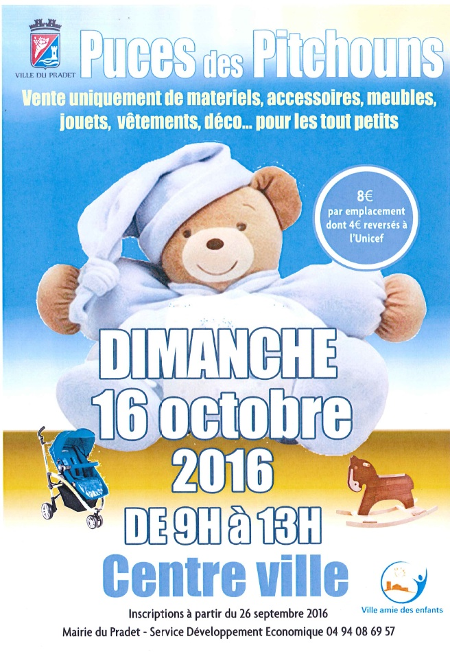 puces-pitchouns-16-octobre-2016